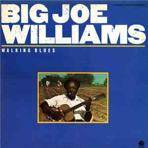 Big Joe Williams - Walking Blues download flac