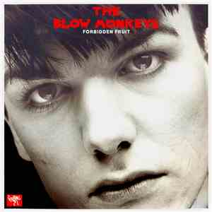 The Blow Monkeys - Forbidden Fruit download flac