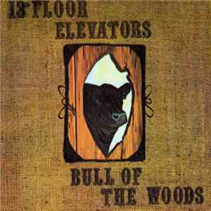 13th Floor Elevators - Bull Of The Woods download flac
